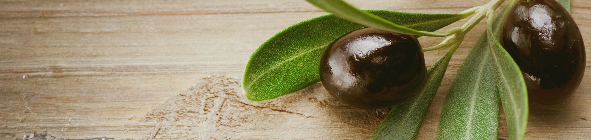 Olio extravergine d'oliva Equo e Bio